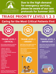 BEVS 2021 emergency care levels